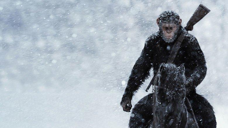 """Gelungener Abschluss der Trilogie: """"Planet der Affen: Survival"""""""
