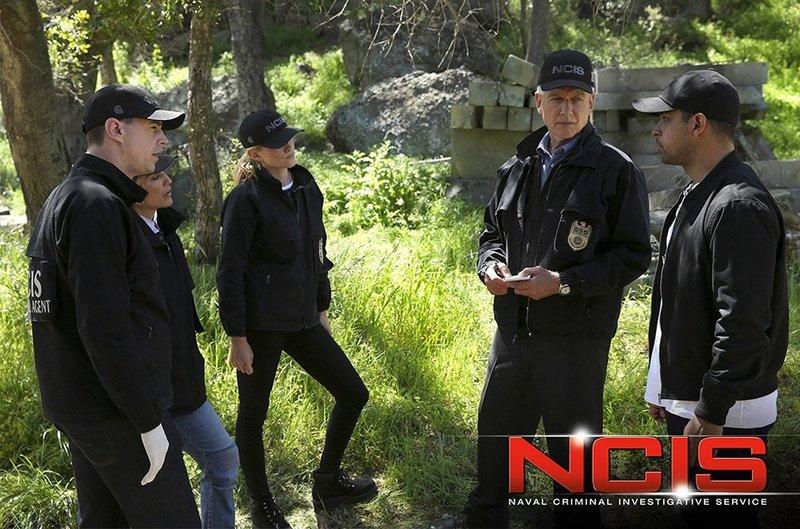 """NCIS"" - Season 14"