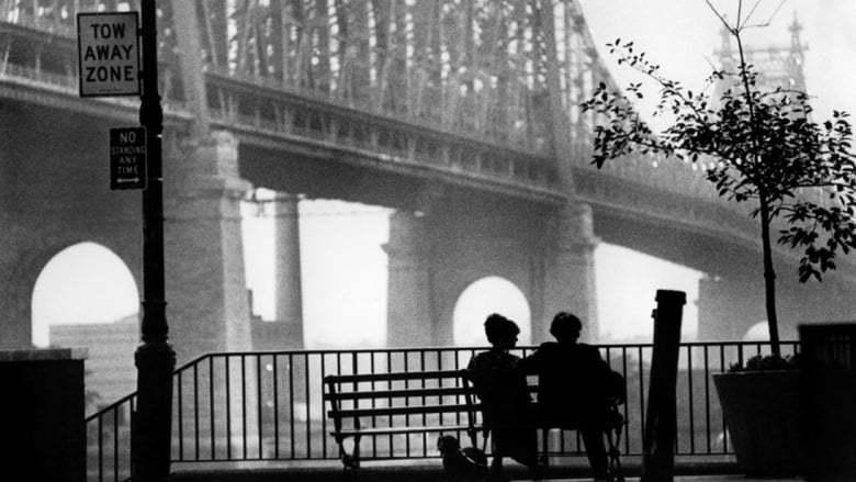 Woody Allen - Collection - Kritik