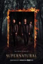 Small supernatural staffel 12 poster