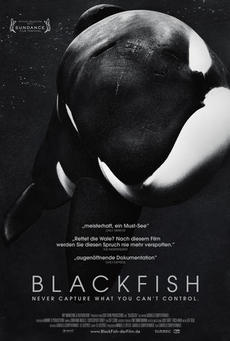 Big blackfish poster 01
