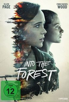 Big 2d into the forest dvd 800x1131