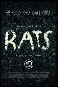 Big rats