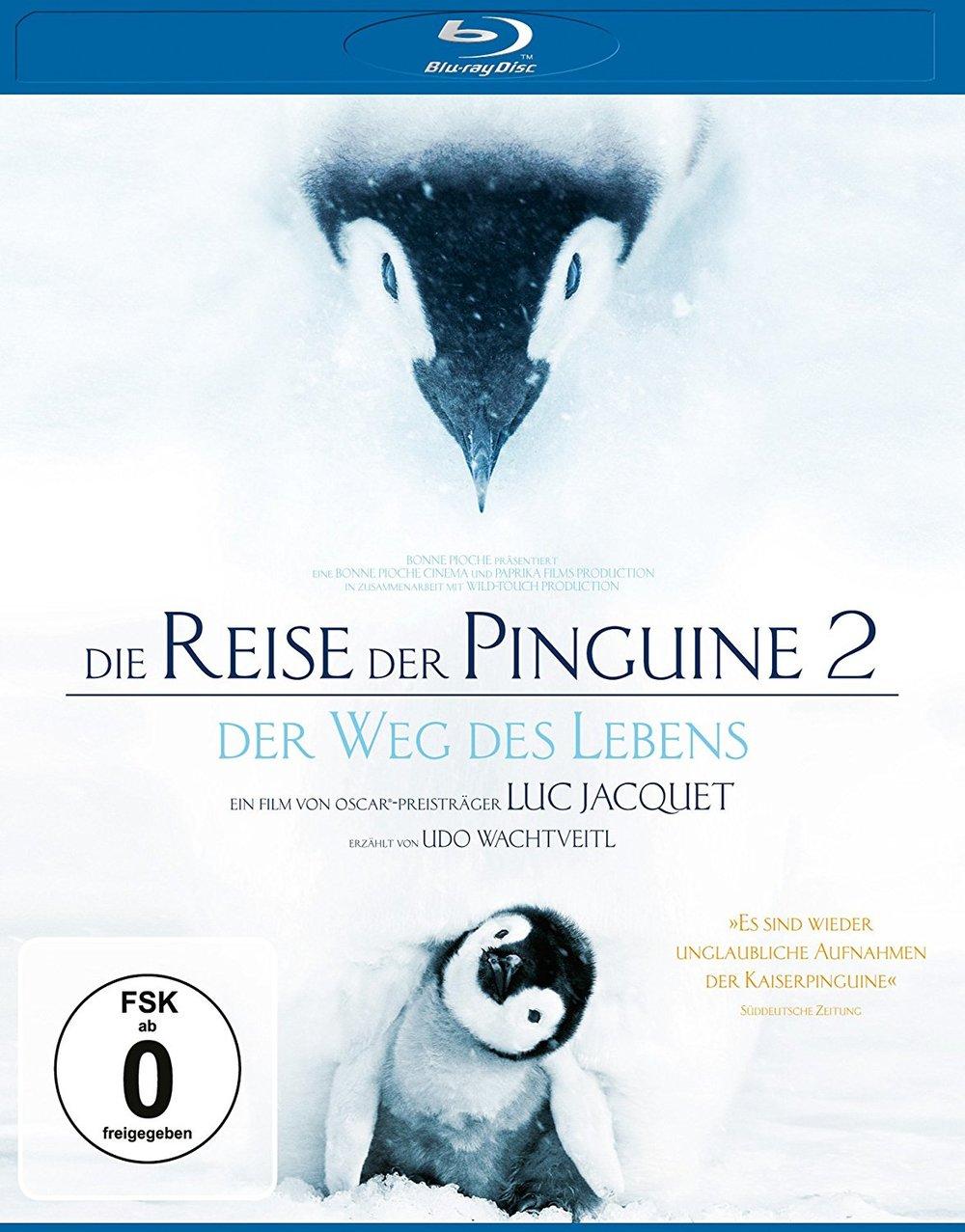 """Macht mit und gewinnt """"Die Reise der Pinguine 2 - Der Weg des Lebens"""" auf Blu-ray"""