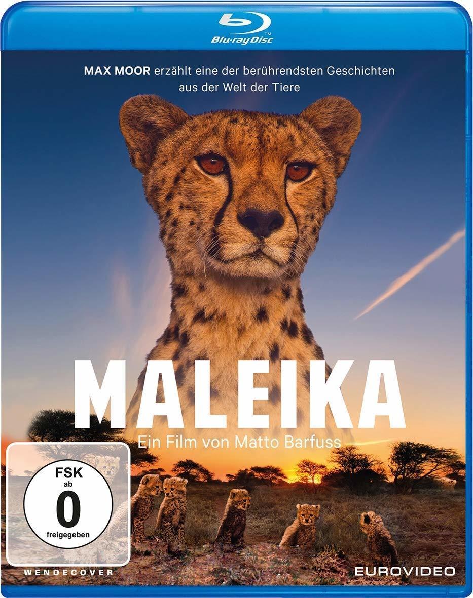 """In der Welt der Tiere: Wir verlosen """"Maleika"""" auf BD"""
