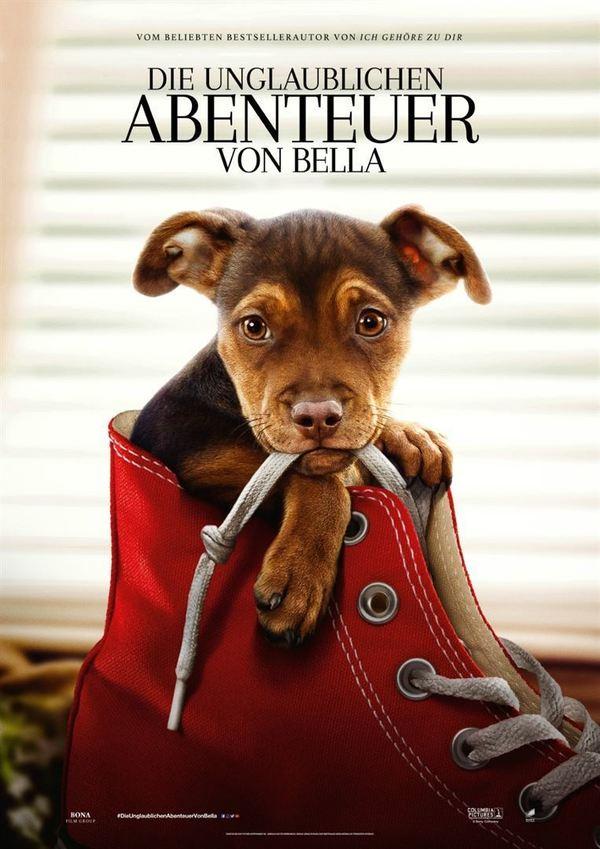 """Ein tierischer Roadtrip: Zum Kinostart von """"Die unglaublichen Abenteuer von Bella"""" verlosen wir ein Fan-Paket"""