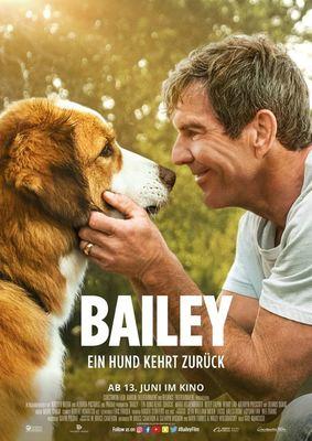 """Eine tierische Fortsetzung: Zum Kinostart von """"Bailey - Ein Hund kehrt zurück"""" verlosen wir tolle Fan-Pakete"""