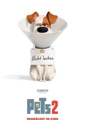 """Max und Co. melden sich zurück und wir verlosen zum Kinostart von """"Pets 2"""" tolle Fanpakete"""