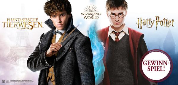 """Wizarding World-Fans aufgepasst! Gewinnt eines von zwei tollen """"Harry Potter"""" Fanpaketen!"""