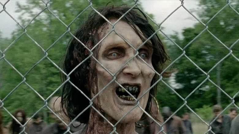 Wie Viele The Walking Dead Staffeln Gibt Es