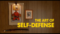 V3 art of self defense review.