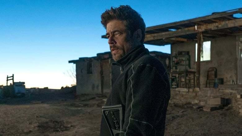 """Benicio Del Toro befindet sich in Gesprächen für """"The Suicide Squad"""" von James Gunn   Moviebreak.de"""