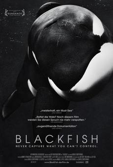 Big blackfish poster 01