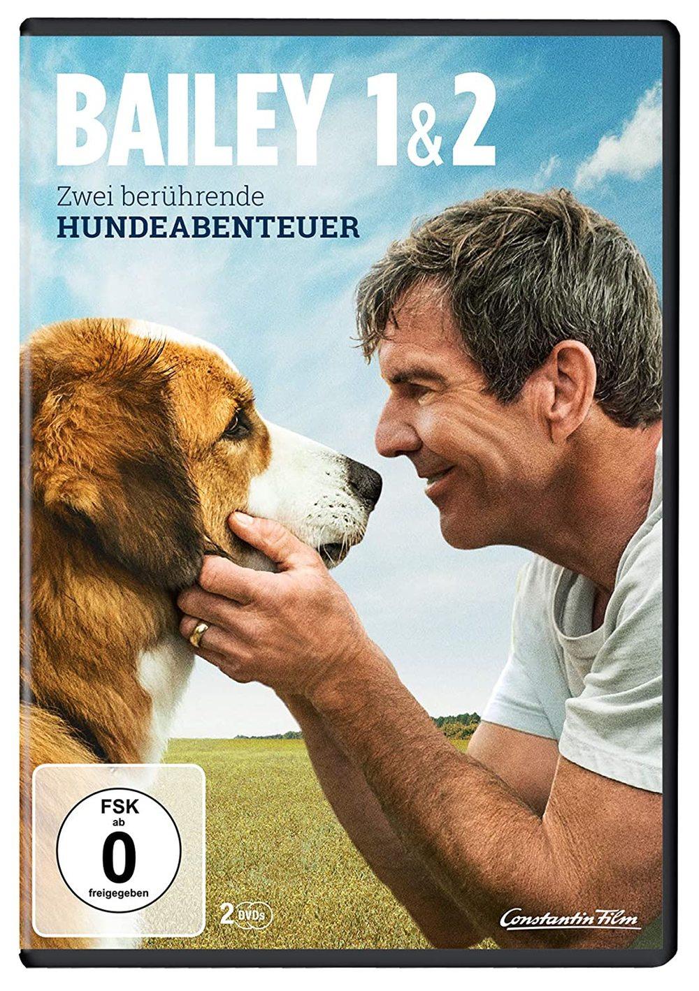 """Hunde-Abenteuer: Wir verlosen """"Bailey - Ein Freund fürs Leben"""" und """"Bailey - Ein Hund kehrt zurück"""" auf DVD"""