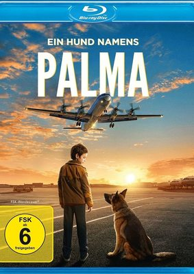 """Ein tierisches Abenteuer: Wir verlosen das Familiendrama """"Ein Hund namens Palma"""" auf BD"""